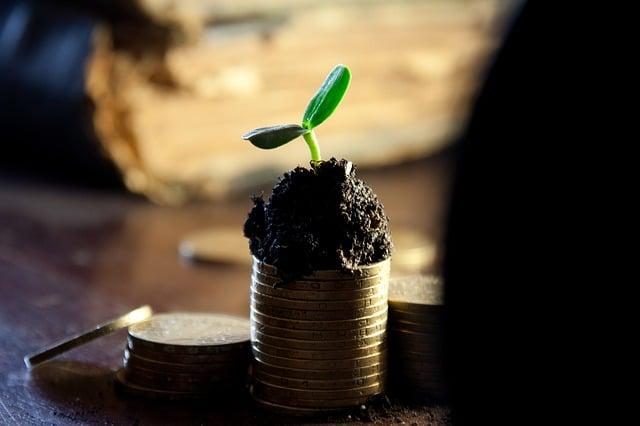 Perbedaan dari Penghasilan dan Pendapatan